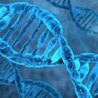 DNA21