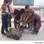 مدرسه کرمان
